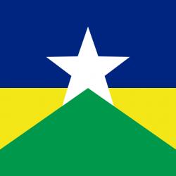 ロンドニア州の州旗
