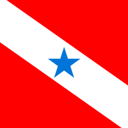 パラー州の州旗